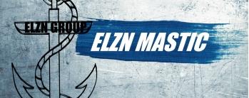 elzn mastic-logo mini